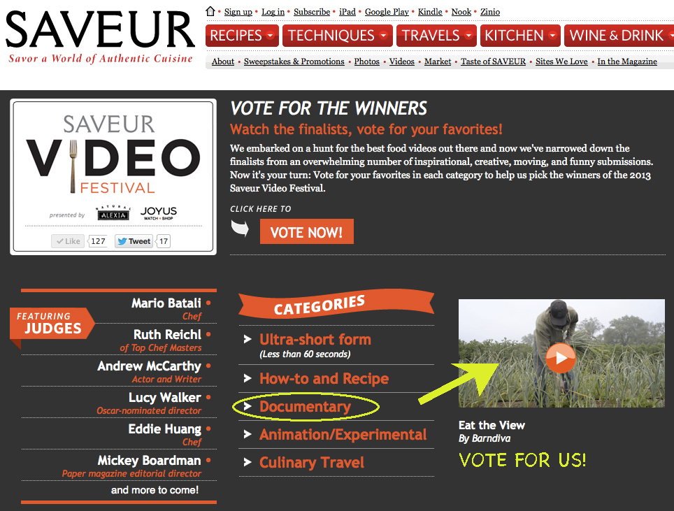 vote-for-Barndiva