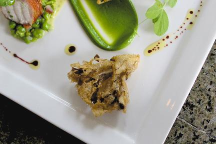 hedgehog mushroom tempura