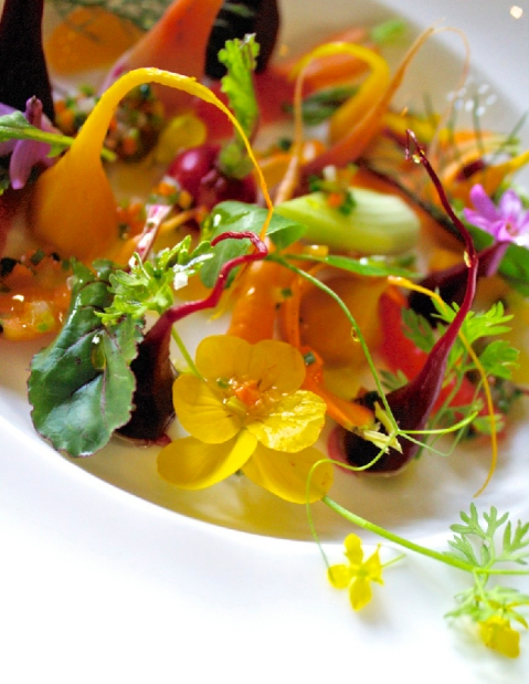 beautiful vegetarian dish