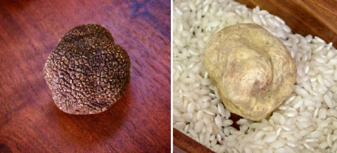 two types truffles