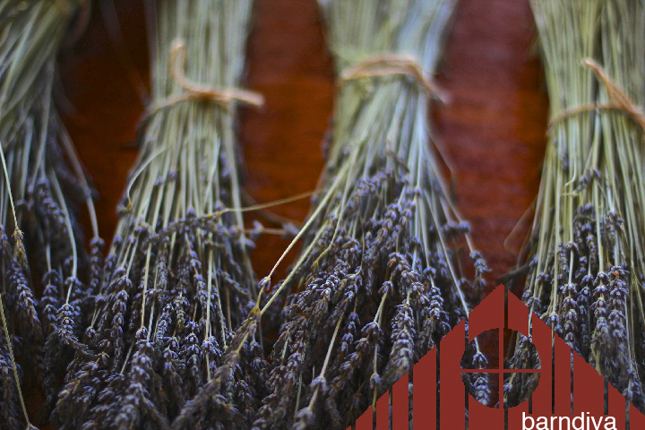 lavender topper